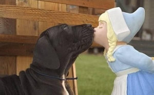 kissing dog